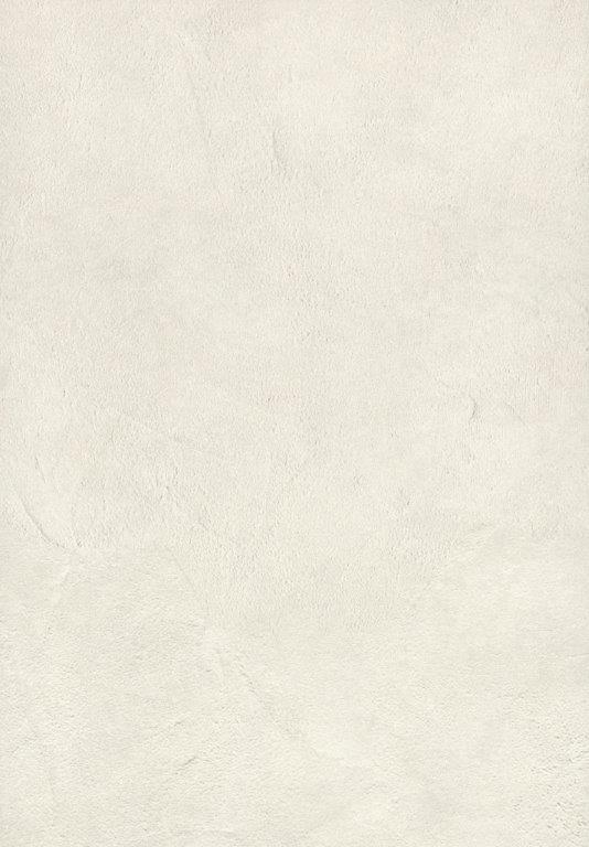 ílovec biely